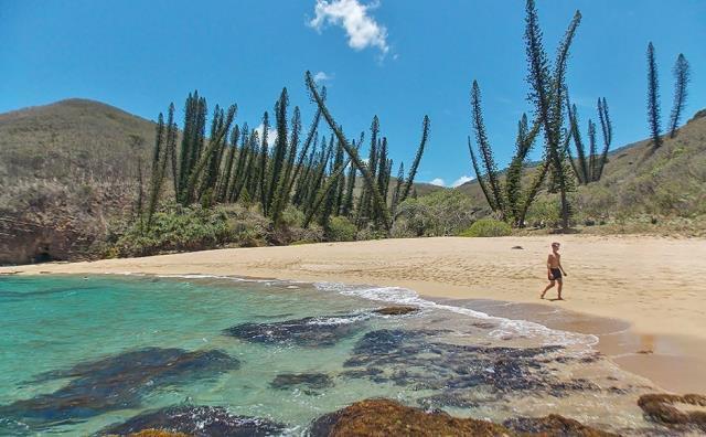Νέα Καληδονία - φύση