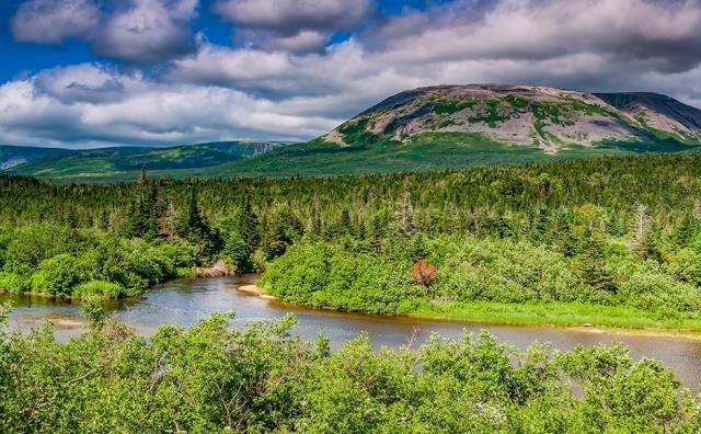 Νέα Γη, Καναδάς - φύση