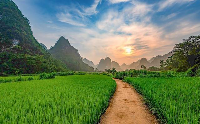 Βιετνάμ φύση