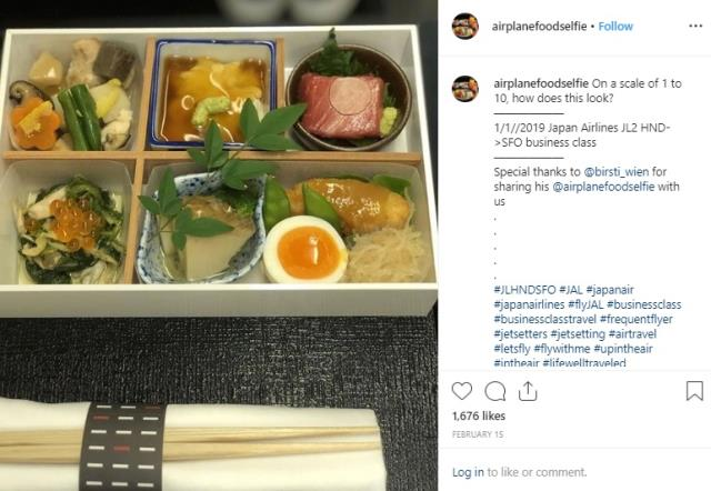airplanefoodselfie - Japan Airlines business class