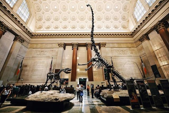 Αμερικανικό Μουσείο Φυσικής Ιστορίας, Νέα Υόρκη, ΗΠΑ