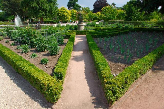 Κήπο των Φυτών Ρούεν, Γαλλία