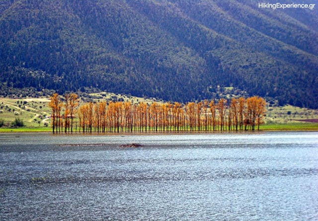 λίμνη Στυμφαλία, Πελοπόννησος