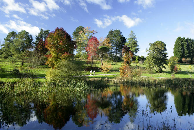 Bedgebury National Pinetum & Forest, Kent, νοτιοδυτική Αγγλία