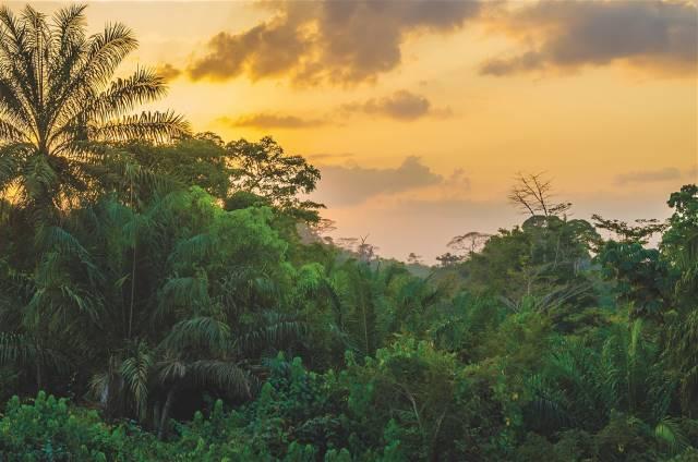 Λιβερία lonely planet
