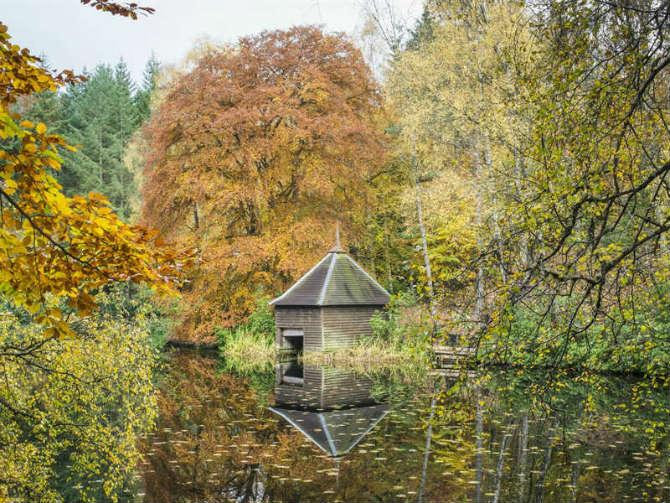 Faskally Wood, Perthshire, Σκωτία