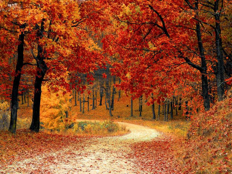 Μεγάλη Βρετανία: Οι 10 ομορφότεροι φθινοπωρινοί προορισμοί