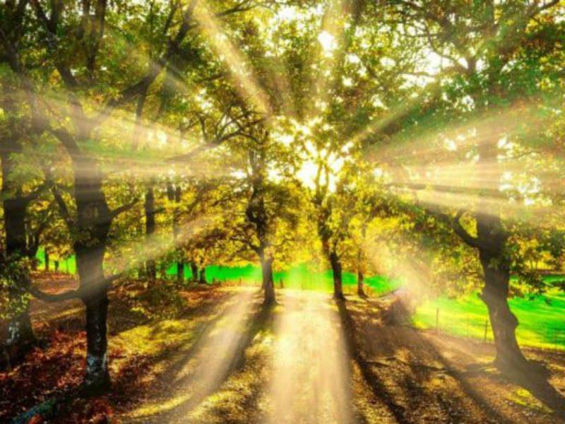 Φθινοπωρινός καιρός - Ηλιοφάνεια