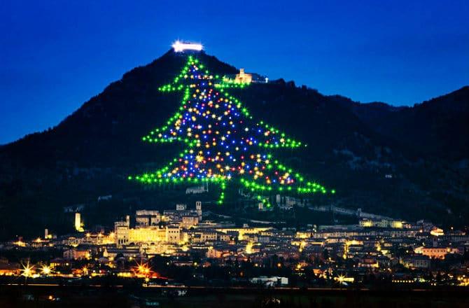 Γκάμπιο, Χριστουγεννιάτικο δέντρο