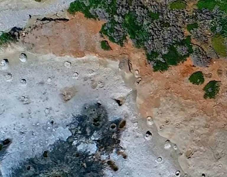 Ένα μαγικό «ταξίδι» στο μοναδικό απολιθωμένο φοινικόδασος της Ευρώπης, που βρίσκεται στην Ελλάδα! (video)
