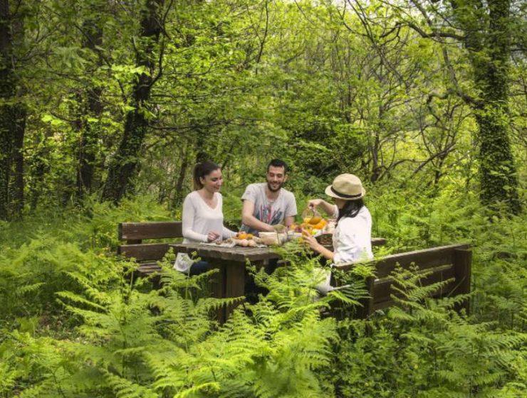 Premium Wellness: Ετοιμαστείτε για μια απόδραση ευεξίας στο Abeliona Retreat!