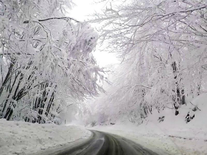Μαγικές εικόνες από τη χιονισμένη Φλώρινα!