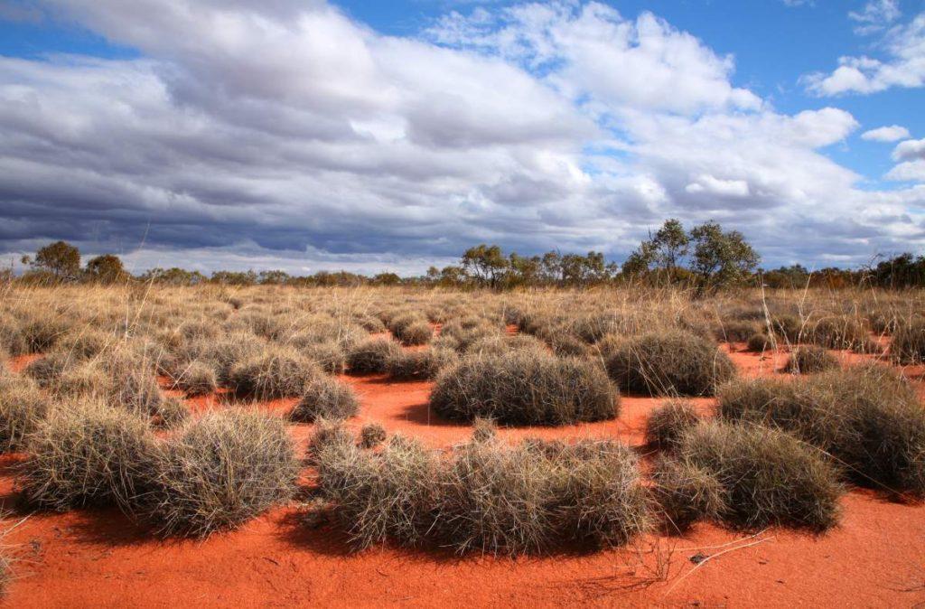 Έρημος Great Victoria Αυστραλία