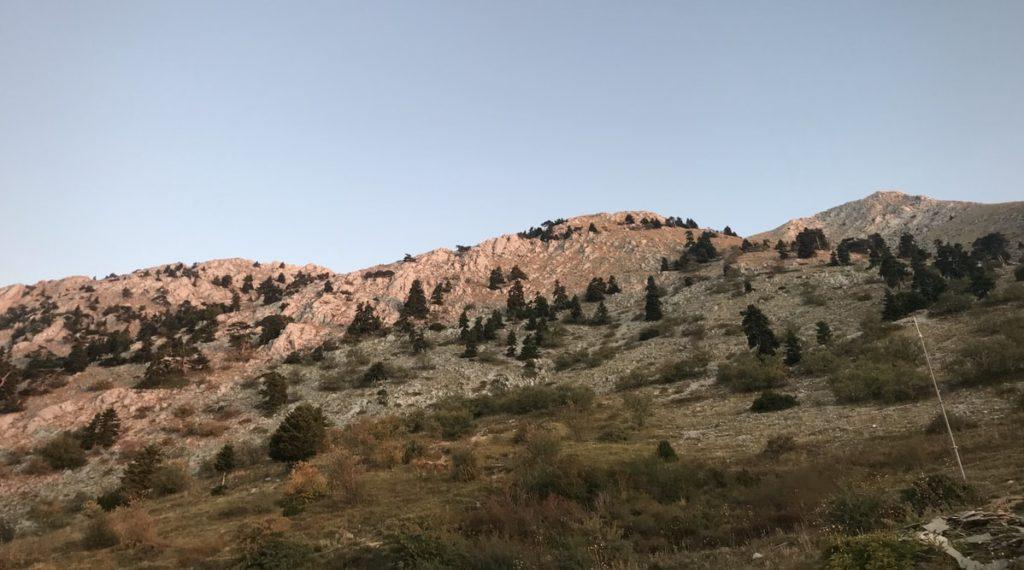 Πεδιάδα κοντά στο Άγιο Όρος