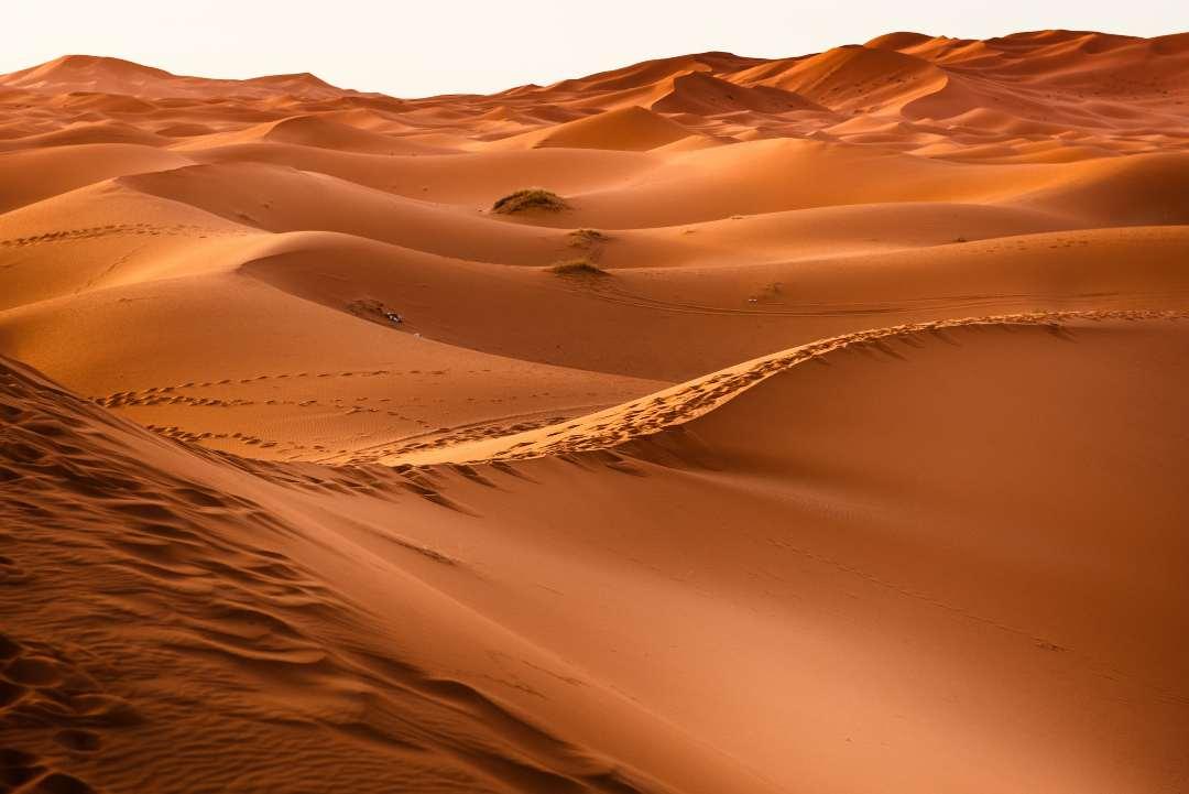 Έρημος γενική εικόνα