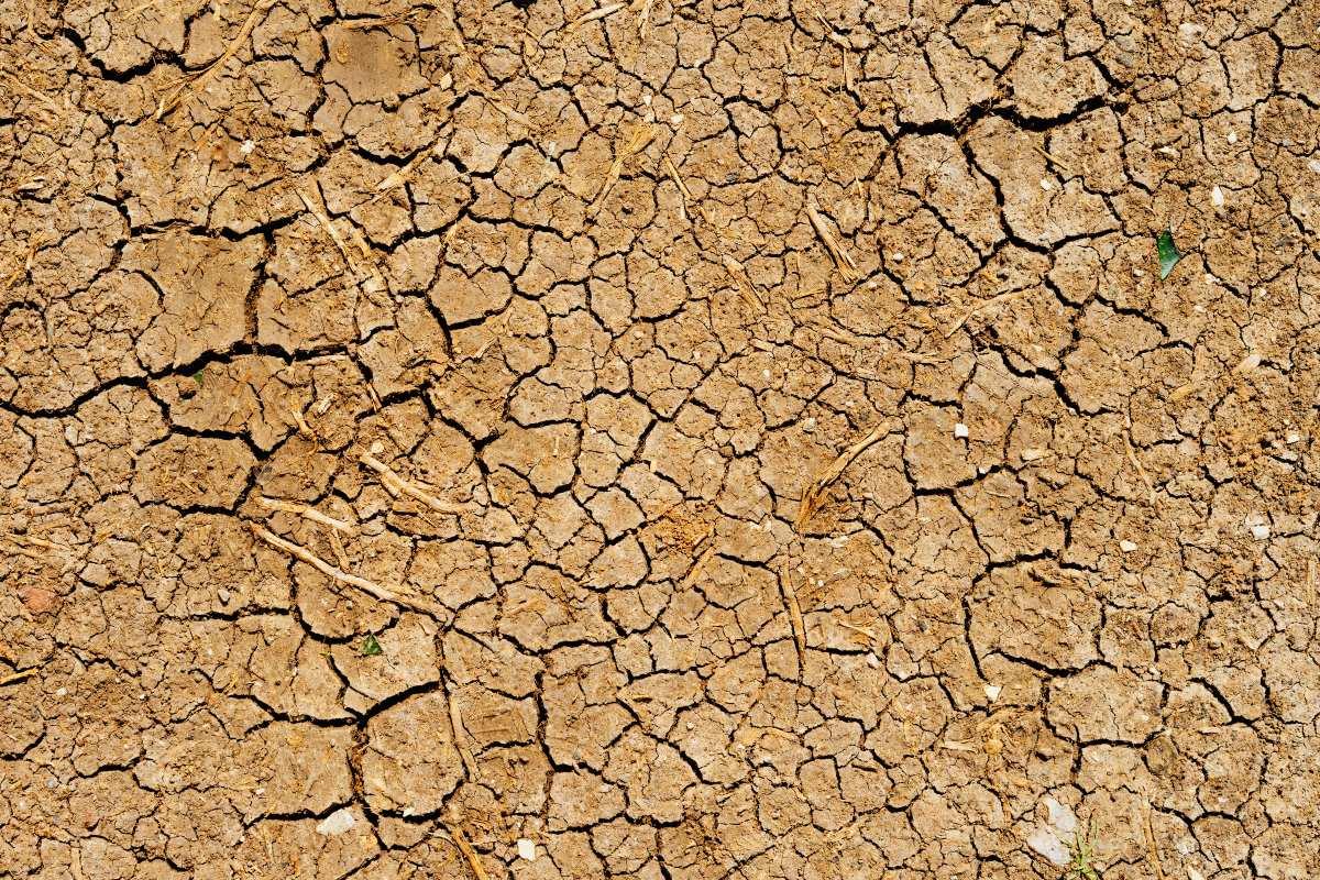 National Geographic: Σε κίνδυνο η Ελλάδα με ερημοποίηση του εδάφους