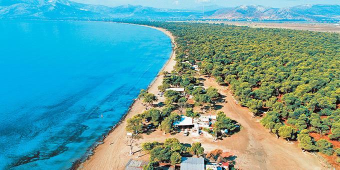 Παραλία Σχοινιά