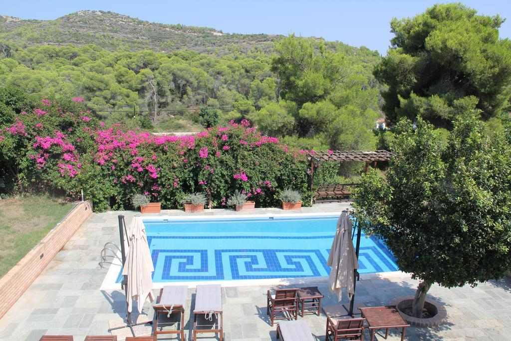Η πισίνα του Villaconte Luxury Apartments τριγυρισμένη από τον κήπο