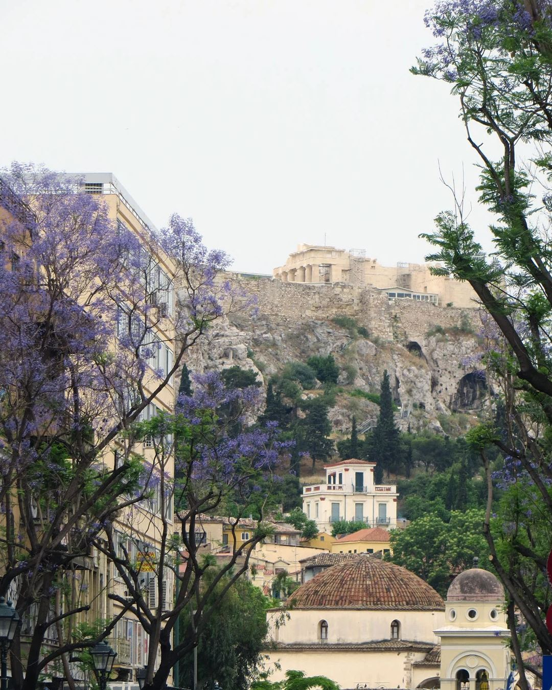 Γιακαράντα στην οδό Αθηνάς