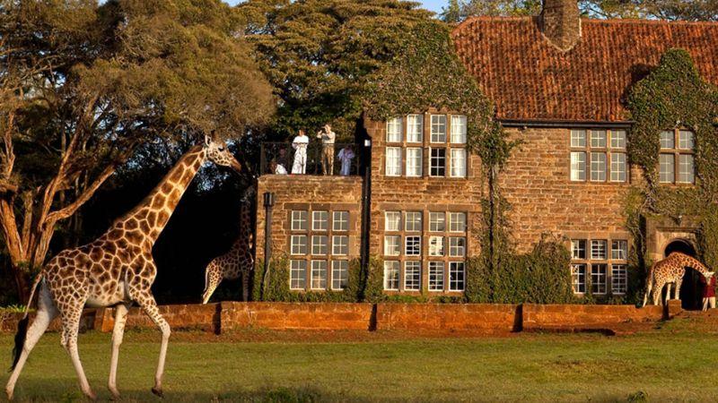 Giraffe Manor, Σουηδία ξενοδοχείο διαμονή 2