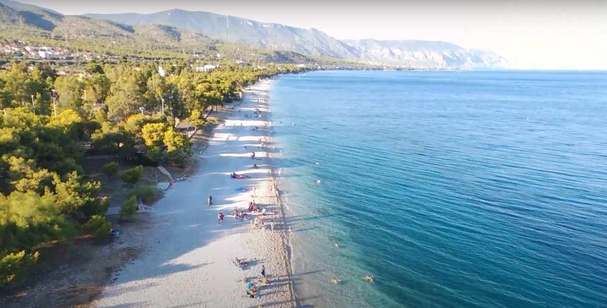 Παραλία Πευκάκια - Άγιοι Θεόδωροι: Μια κοντινή, εξωτική παραλία για τις βουτιές σας το Σαββατοκύριακο
