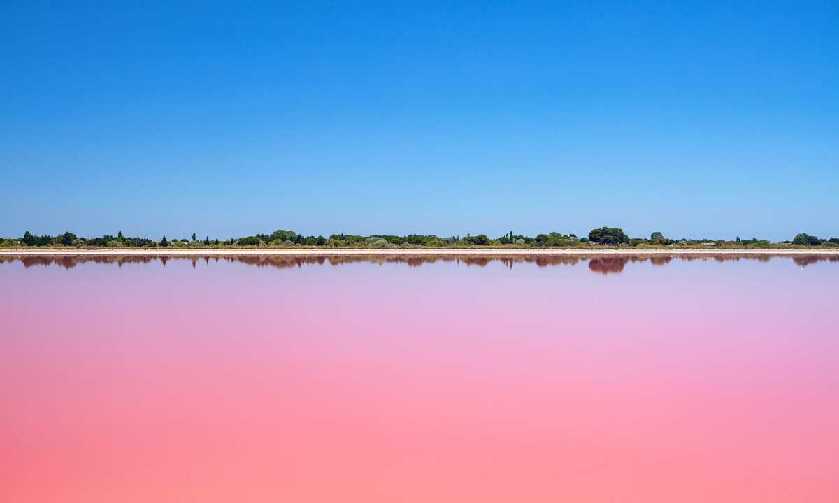 Ροζ λίμνη Camargue, Γαλλία