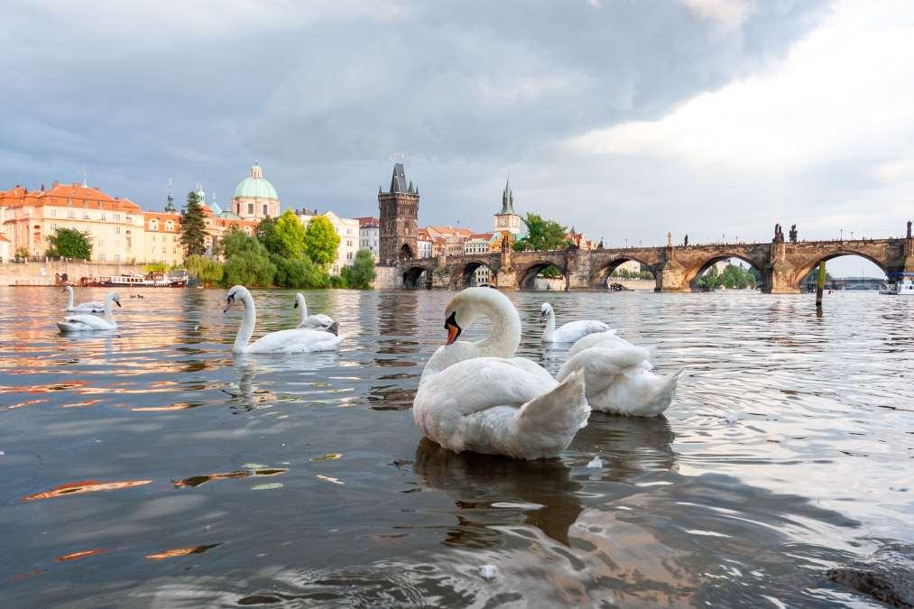 Ο ποταμός Vlatava, Πράγα