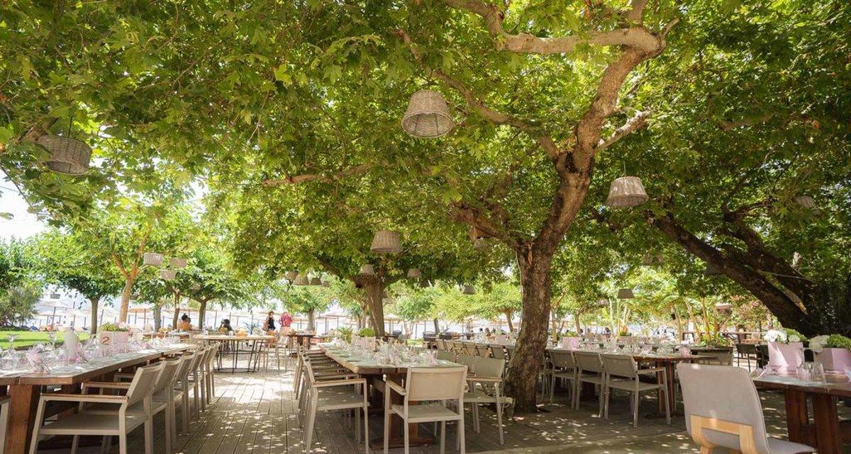 Natura Restaurant Lounge bar