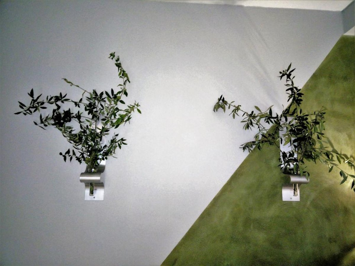 Nix Nax Καλαμάτα διακόσμηση με ελιές