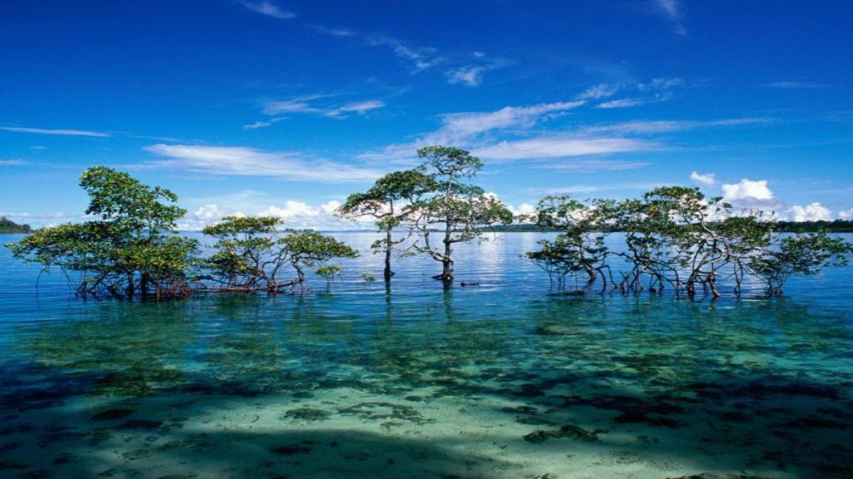 Νησί Χάβελοκ, Ινδία