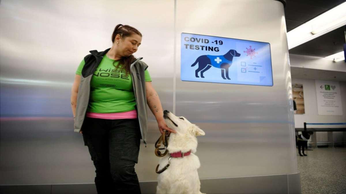 αεροδρόμιο Ελσίνκι test covid σκυλιά