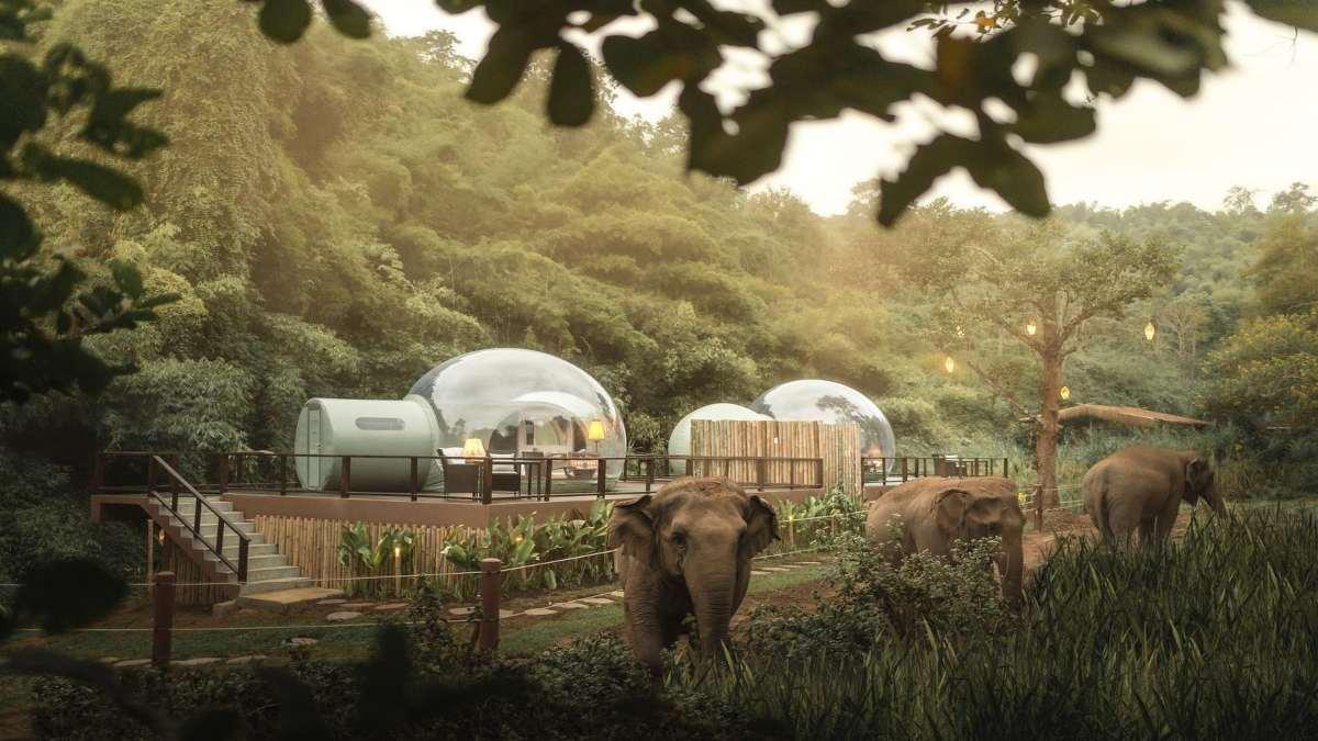anantara resort ταϊλάνδη δωμάτια φούσκες ελέφαντες κοντινό