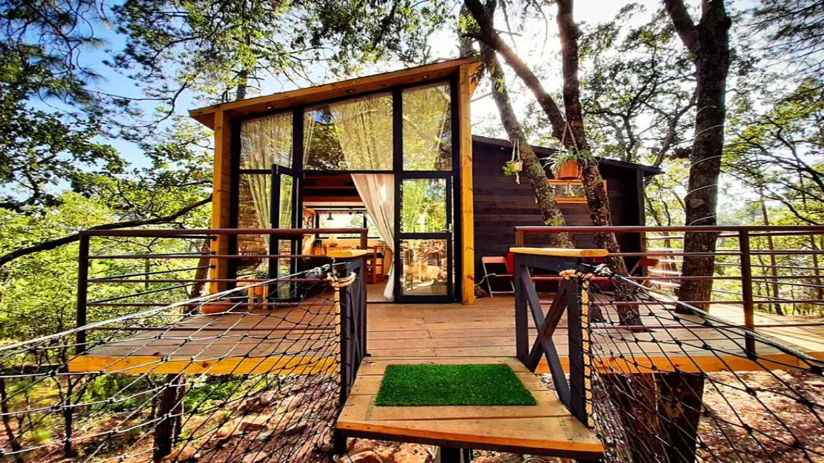 Cabane dans les Arbres, Βέλγιο Airbnb