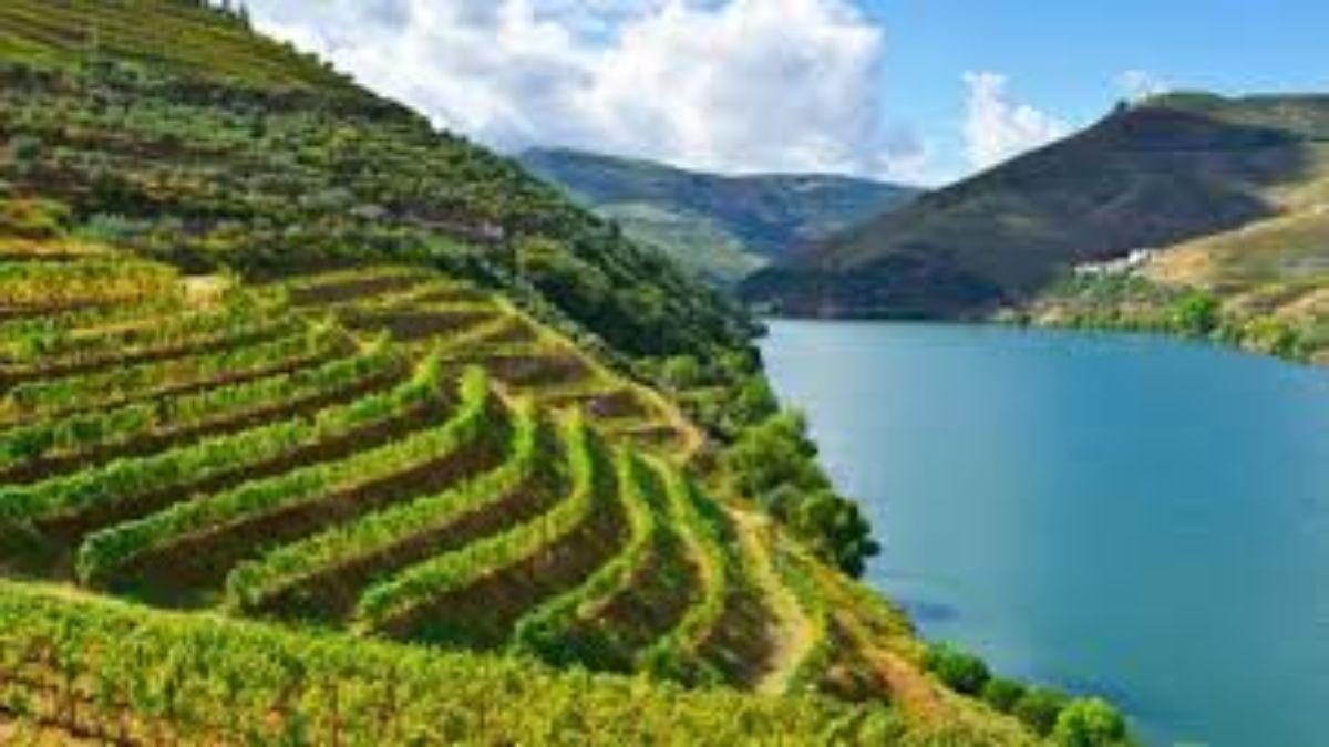 Κοιλάδα Douro