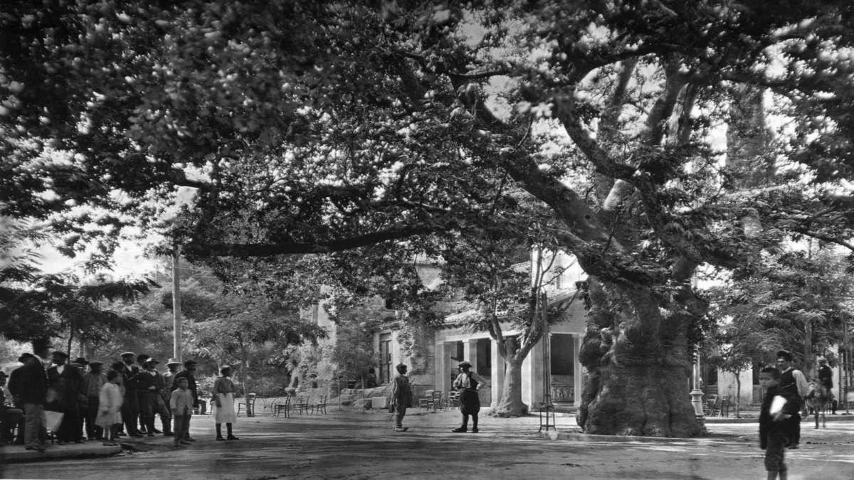Κηφισιά 1920 Παλιά Αθήνα