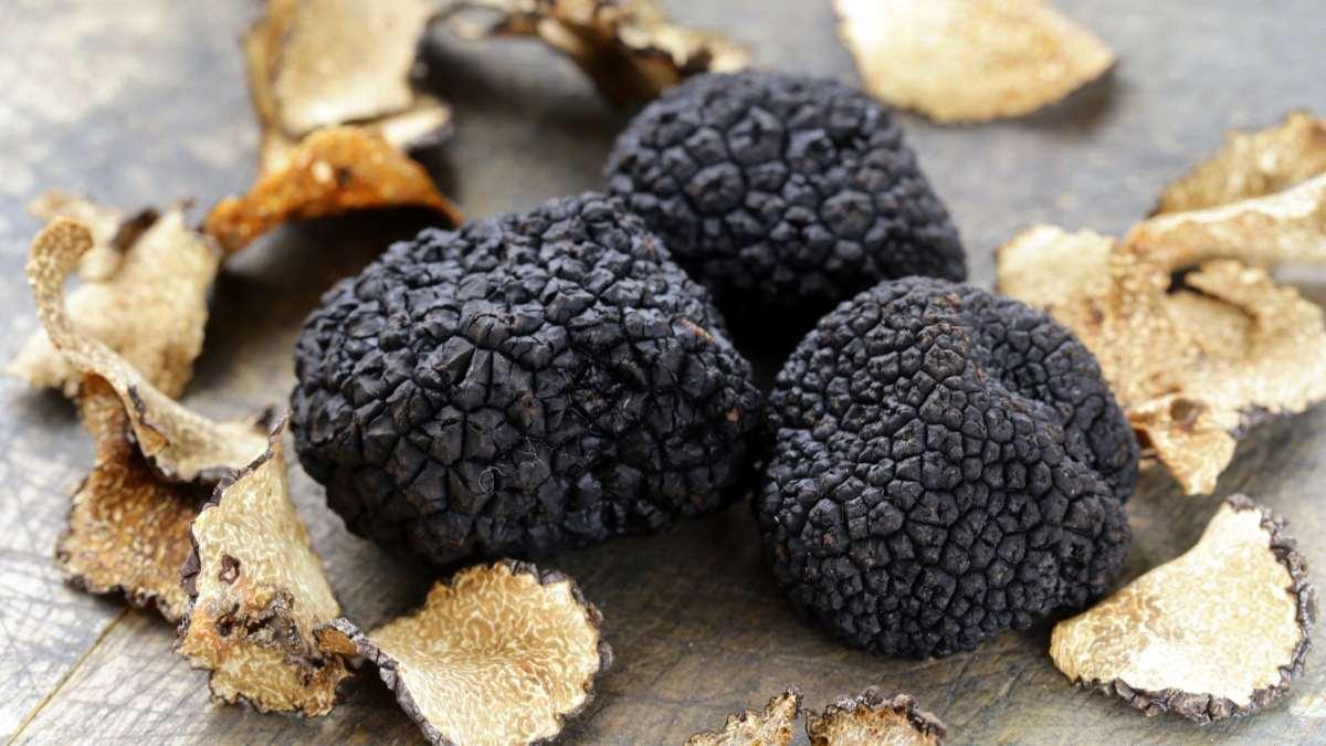 μαύρη τρούφα σε ξύλινο πάγκο