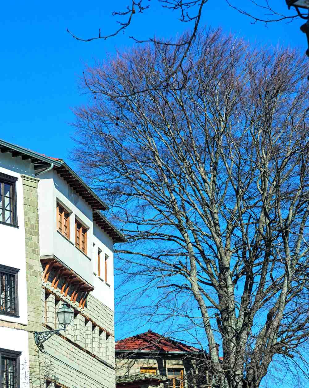 Χαρακτηριστική αρχιτεκτονική στα πέτρινα κτήρια του Μετσόβου