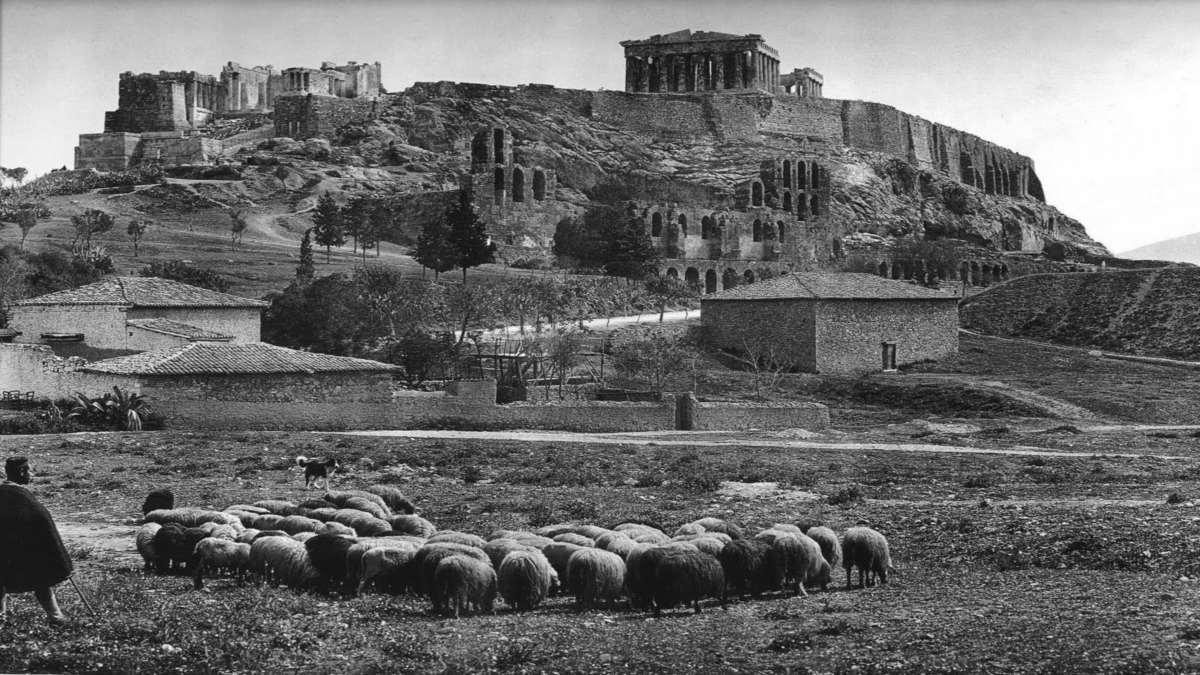 Παρθενώνας 1908 πρόβατα Παλιά Αθήνα