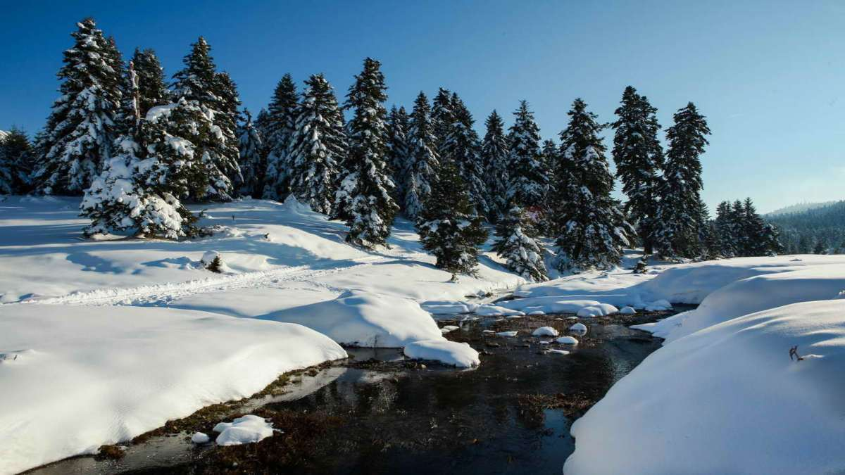 Χιόνια Περτούλι