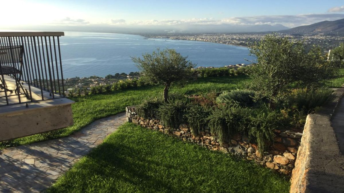 Petra Thea θέα από τις ελιές