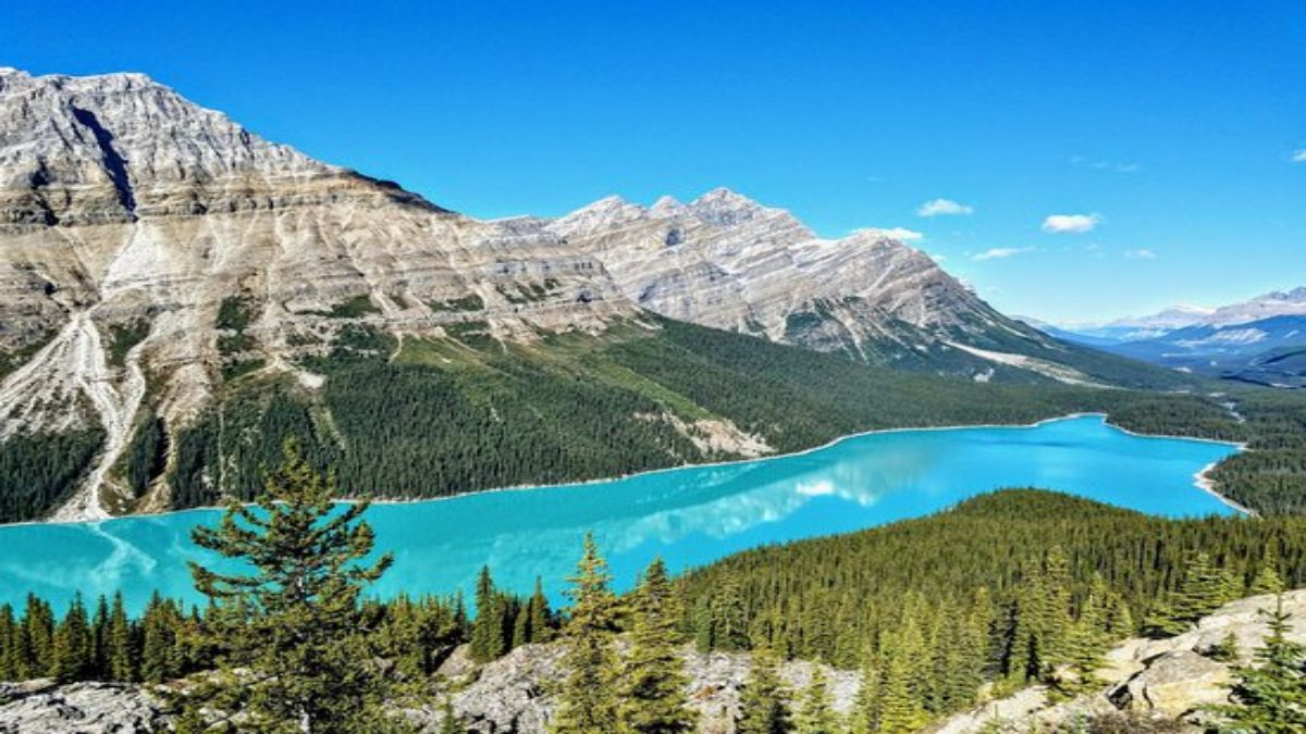 Peyto Lake, Καναδάς