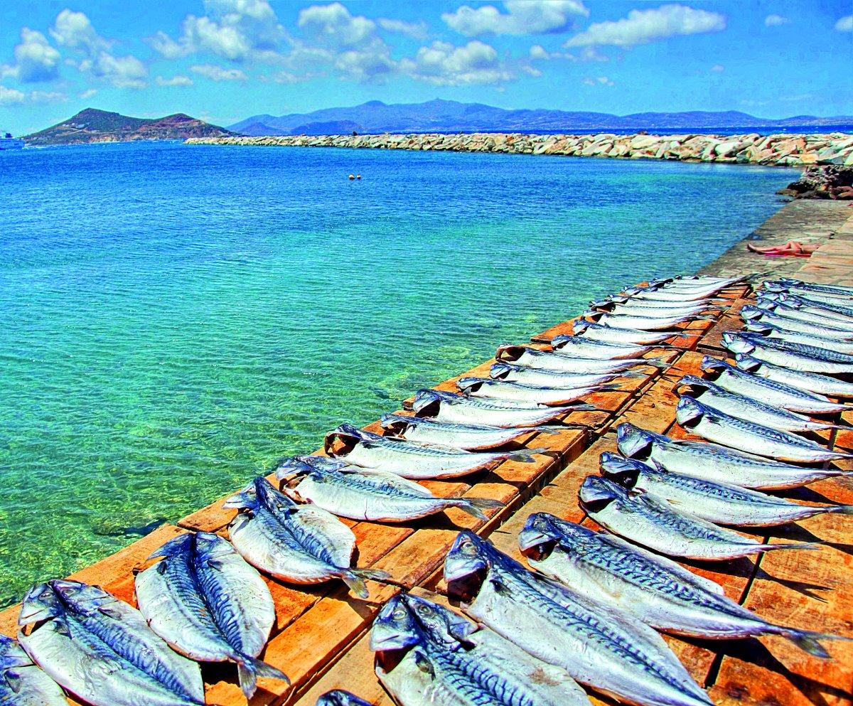 Προετοιμασία για παστά ψάρια, Νάξος