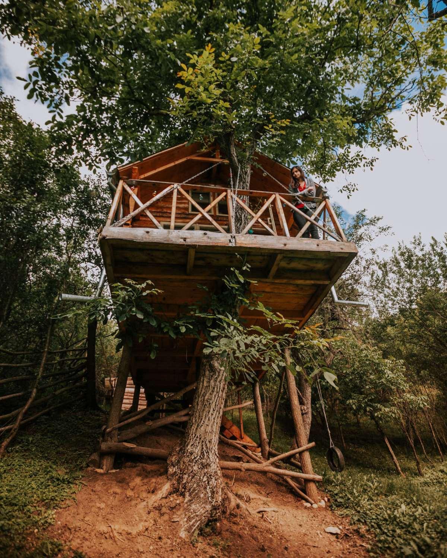 transylvania tree house δεντρόσπιτο βεράντα