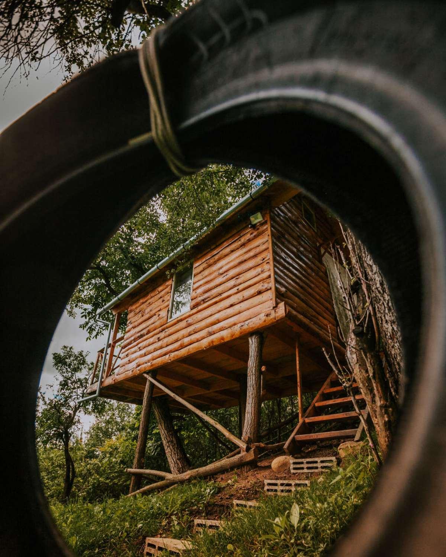 transylvania tree house δεντρόσπιτο εξωτερική λήψη ρόδα