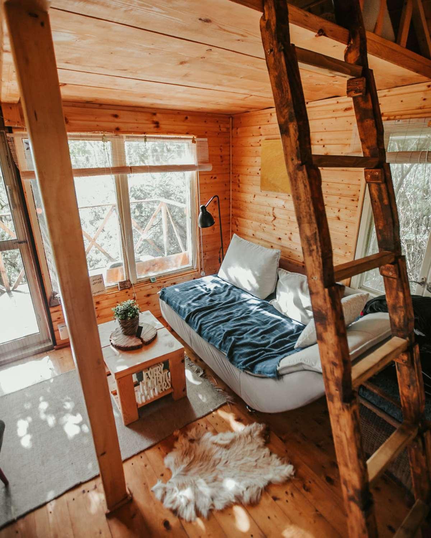 transylvania tree house δεντρόσπιτο καθιστικό