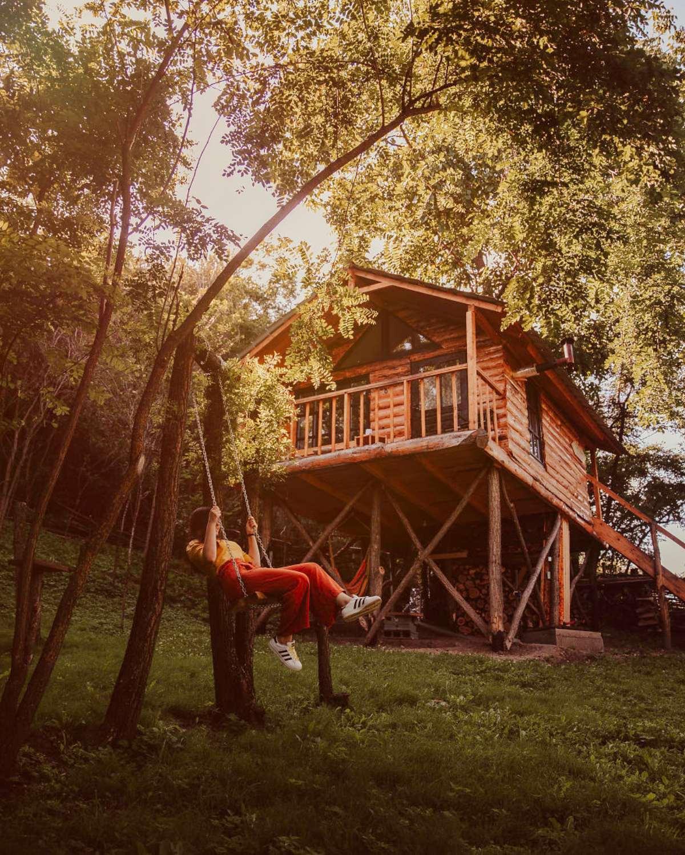 transylvania tree house δεντρόσπιτο εξωτερική λήψη κούνια
