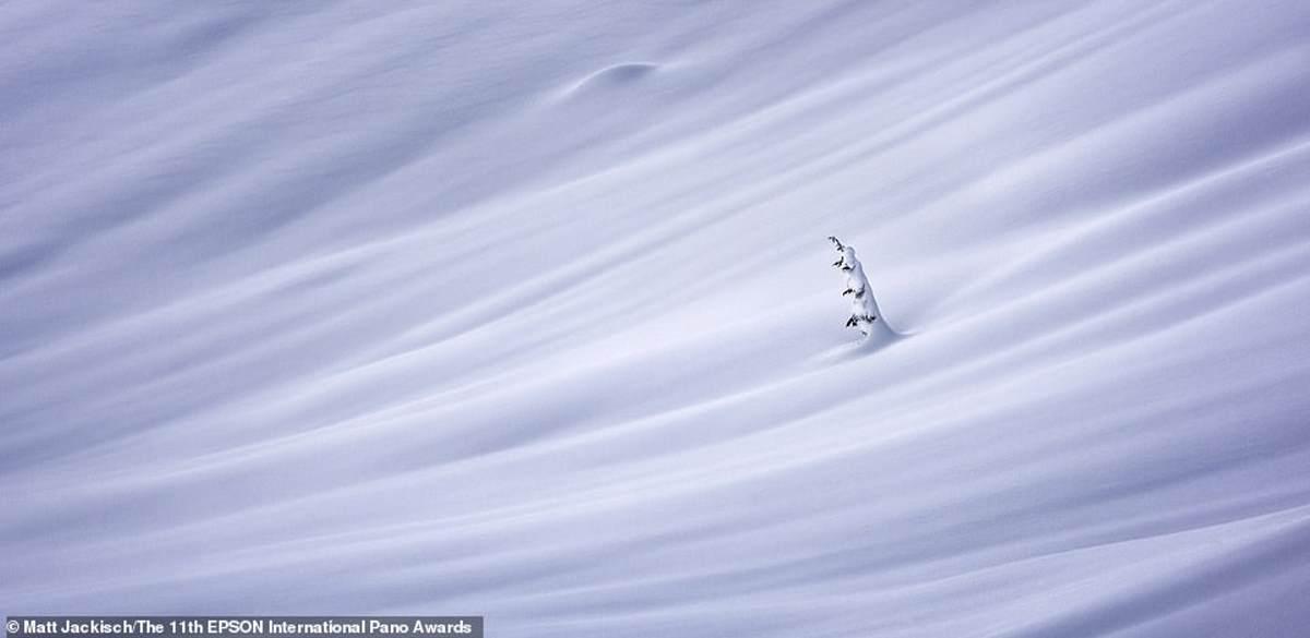 Η νικητήρια φωτογραφία όλων από τον Matt Jackisch στα παράκτια βουνά της Βρετανικής Κολομβίας τον Μάρτιο.