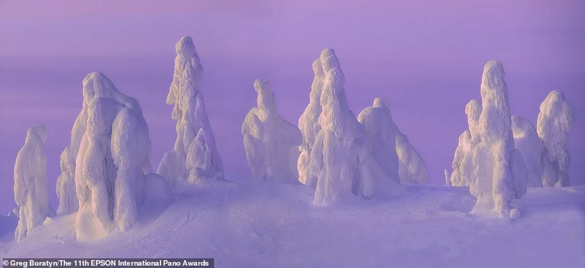 Ο Αμερικανός φωτογράφος Greg Boratyn βρίσκεται πίσω από αυτό το πλάνο, που τραβήχτηκε στη Φινλανδική Λαπωνία. Το ονόμασε «Snow Ghosts»