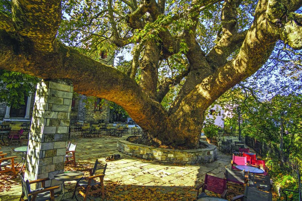 Στο κέντρο της όμορφης Τσαγκαράδας στο Πήλιο