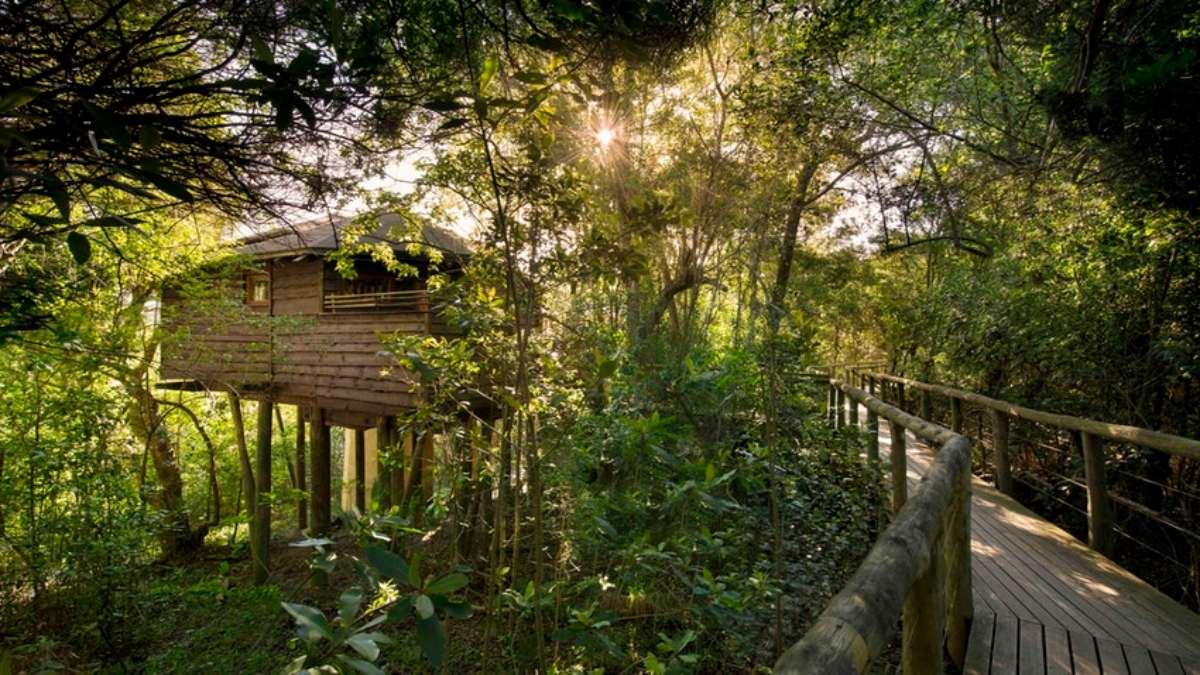 Tsala Treetop Lodge, Νότια Αφρική